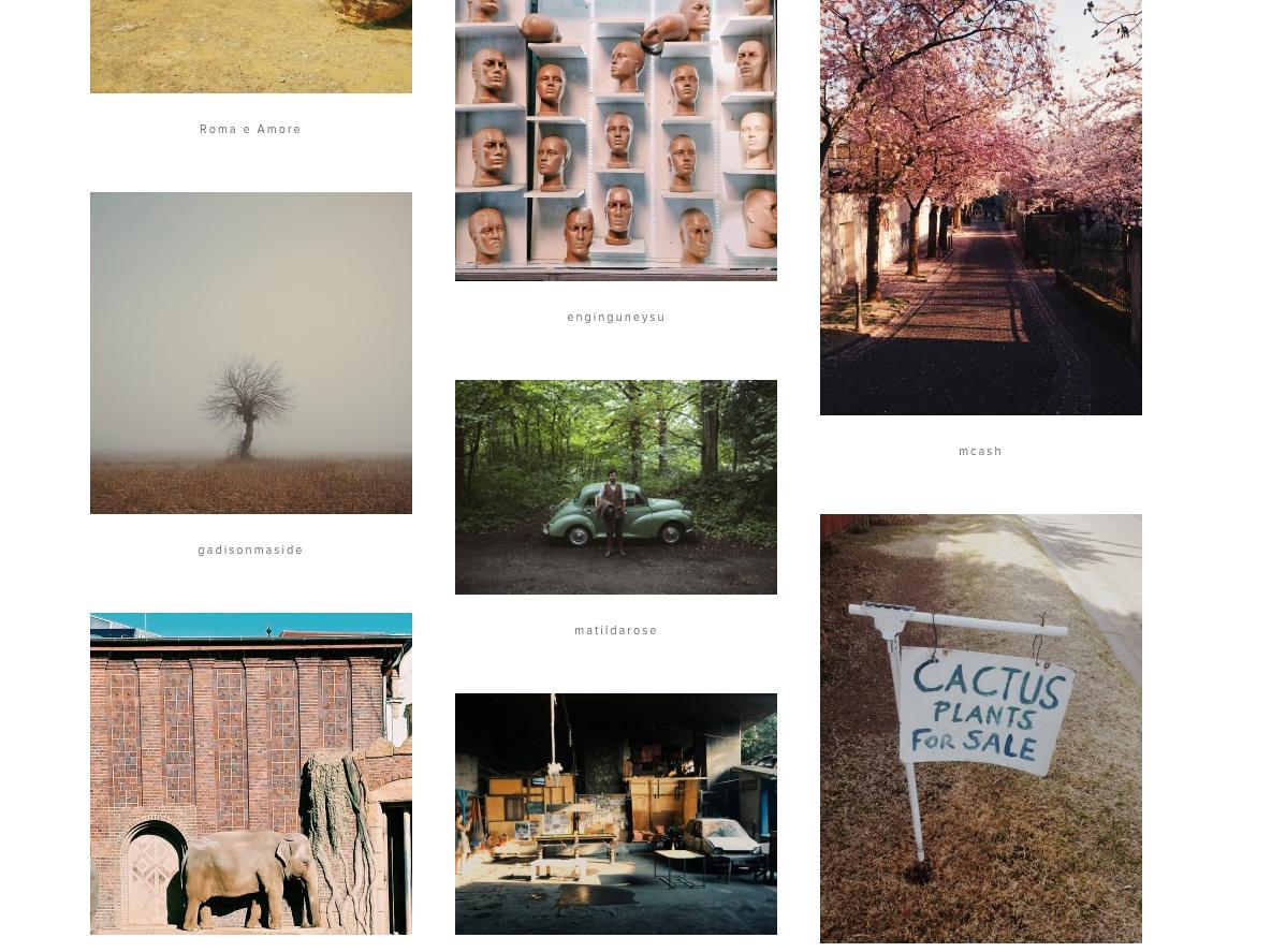 Featured Photography on VSCO Grid
