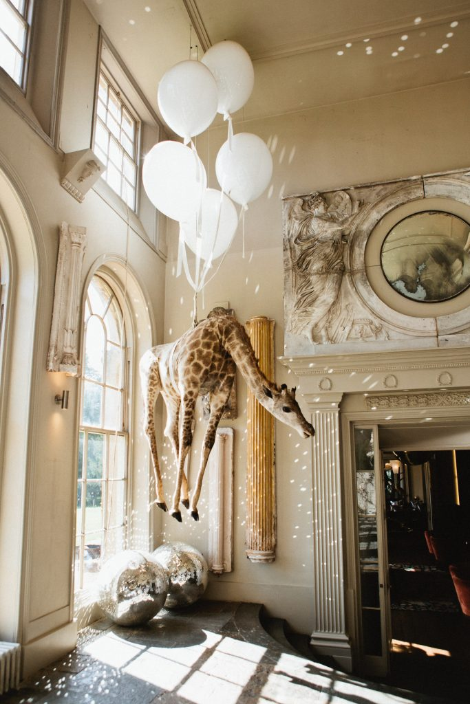 The taxidermy giraffe at Aynhoe Park which hangs from the ceiling on the orangery