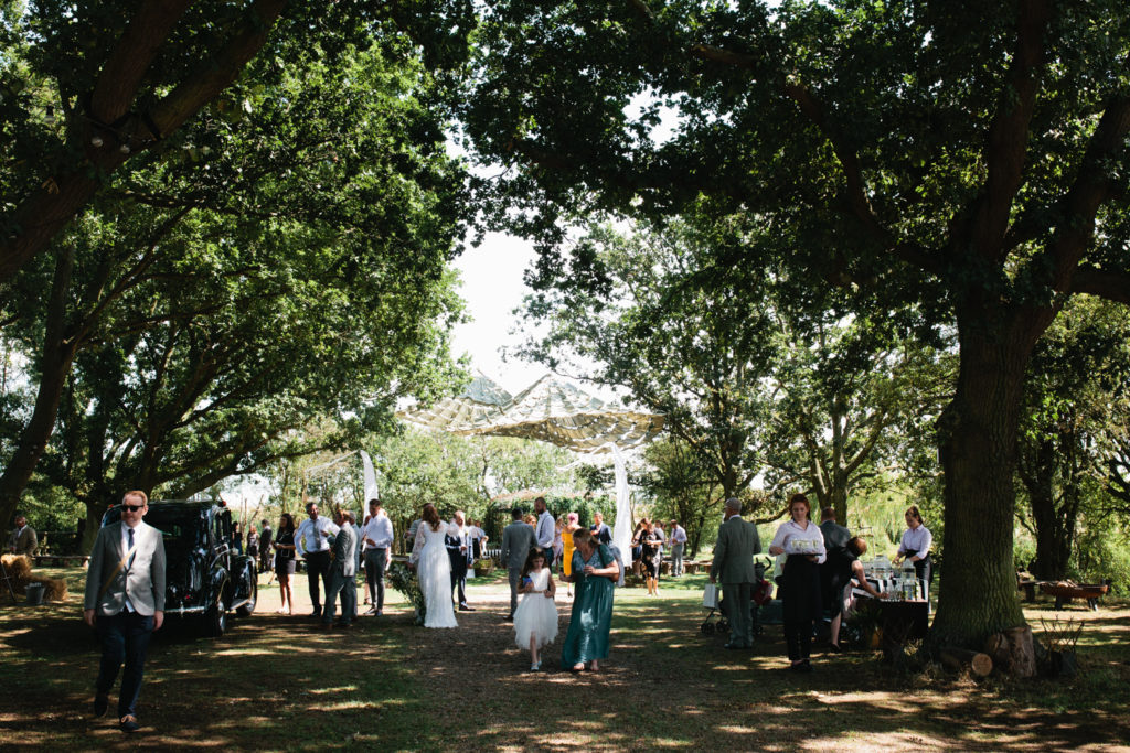 A summer wedding party in a woodland at The Oak Grove in North Kent