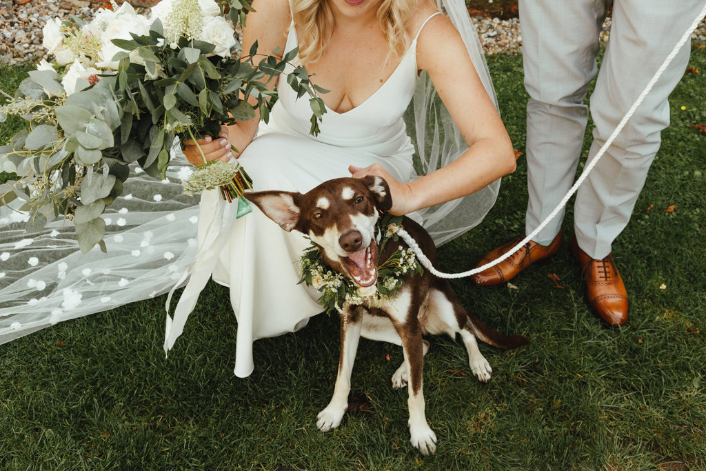 A wedding portrait of a bride and groom with their dog at Clapton Country Club in London