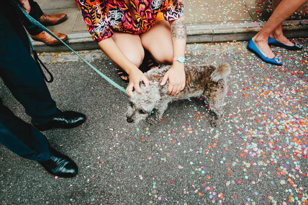 A cute dog edding guest outside of a Stoke Newington Town Hall Wedding photographed by natural london wedding photographer Matilda Delves